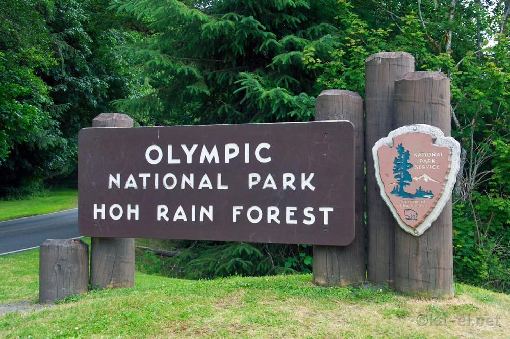 Index on Rain Forest Ecosystem